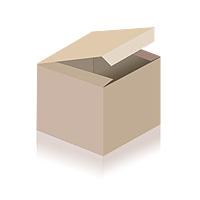 Bionade Ingwer-Orange 6x0,5L